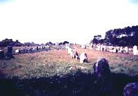 Nejslavnější kamenné aleje stojí nedaleko Carnacu