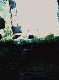 Pohled ze sklepa